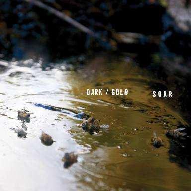 Soar band San Francisco dark/gold album review father/daughter records