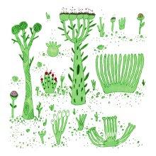 Plant Food Fox Food Records Bandcamp