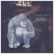 Tempertwig Fake Nostalgia An Anthology of Broken Stuff