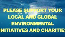 Sl0tface Sink or Swim stream environmental issues