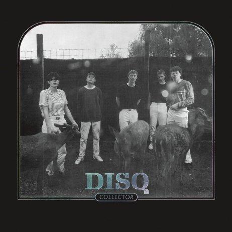 Disq Collector album review Saddle Creek 2020