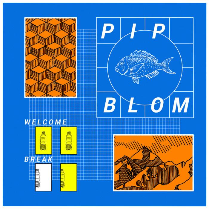 Pip Blom Welcome Break album review Heavenly Recordings 2021